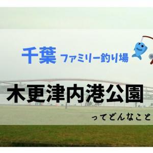 【千葉県の釣り場】木更津内港公園で釣りをした結果:2020/11