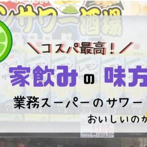 【業務スーパー】コスパ最高!酒屋が真面目に作ったチューハイ/1番安く呑む方法は?