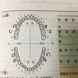 妊婦の歯科検診
