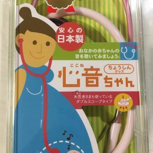 【実体験】家庭用聴診器、心音ちゃんを使ってみた!
