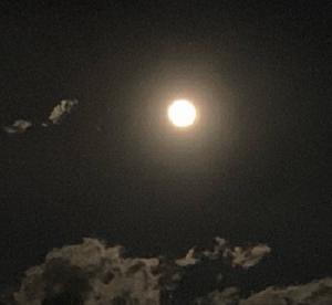 満月を 眺める  コールドムーン
