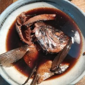 【時短料理レシピ】釣れたチヌの兜煮