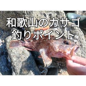 【2020年版】和歌山カサゴ釣りポイント10選