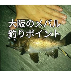 【2020年版】大阪のメバル釣りポイント7選
