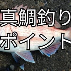 【2021年版】関西真鯛釣りポイント7選
