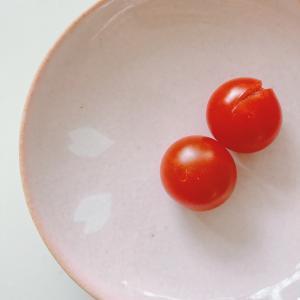 初収穫!うちのプランターミニトマト☆プランター栽培