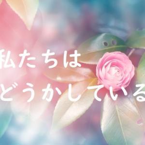 私たちはどうかしている7話あらすじネタバレ・光月庵を乗っ取ろうとする七桜?