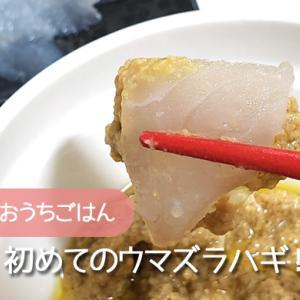おうちごはん|肝が絶品!初めてウマズラハギを食べてみた。