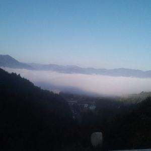 色づく山の風景