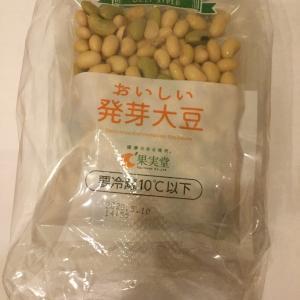 【ダイエット】大豆は大豆でも果実堂さんの発芽大豆がおすすめな理由