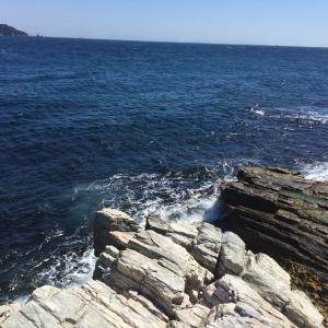 新規釣り場を求めて冒険のたび 大分県
