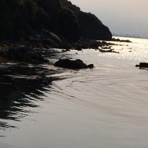 アジ釣りのスタイルとアジングの本質 大分県