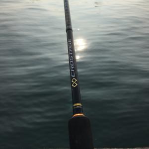 アジングロッドサビキで、アジ釣り釣行に! 大分県