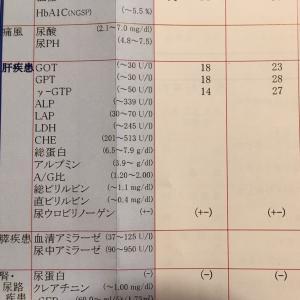 健康診断の結果がヤバイ〜!