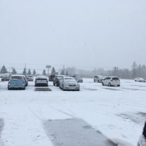 雪〜〜〜!!
