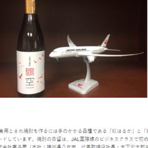 羽田空港のさくらラウンジをエコノミーで使わせていただいた話