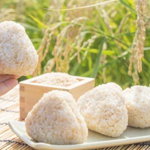【お米のくりや】発芽酵素玄米炊飯器のサブスク!口コミ・評判を調査!