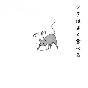 003_食べるフク
