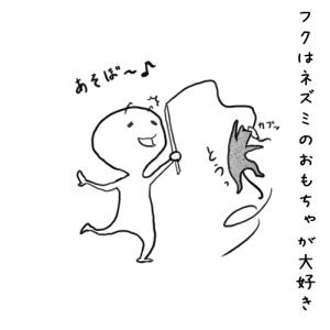 004_フクと遊ぶ