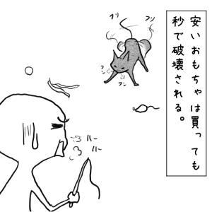 009_新おもちゃ