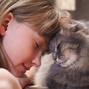 【猫の不思議】首をかしげる仕草で猫の気持ちが分かる・・かも