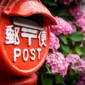 迷惑な餌やりや外飼いに内容証明郵便を送ろう!