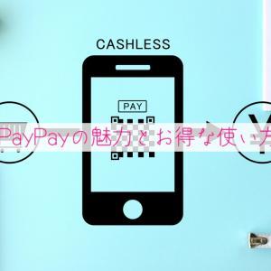 【実践値】年間30,279円(約8.2%)還元!PayPayの魅力とお得な使い方