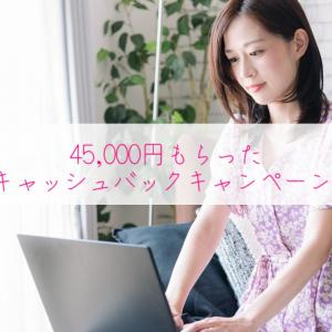 【45,000円もらった】NURO光キャッシュバックキャンペーンの体験談