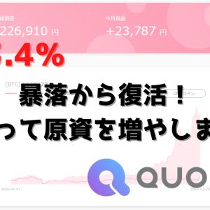 【原資から+13.4%】暴落から復活!訳あって原資を増やしました【クオレアBTC】