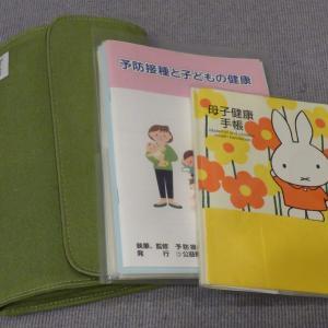 母子手帳交付!おすすめ母子手帳ケースは?~妊娠体験談~【未婚の妊婦になる!6】