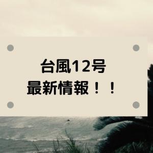 台風12号たまご2020進路予想!米軍・ヨーロッパ・気象庁の予報図と日本接近はいつ?