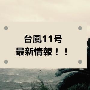 台風11号2020の進路予想!米軍・ヨーロッパの予報図と日本接近はいつ?