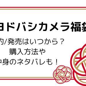 ヨドバシ福袋2021予約/発売はいつから?購入方法や中身のネタバレも!
