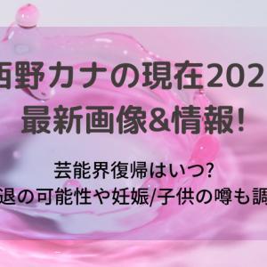 西野カナの現在2021最新画像&情報!芸能界復帰はいつ?引退の可能性や妊娠/子供の噂も調査
