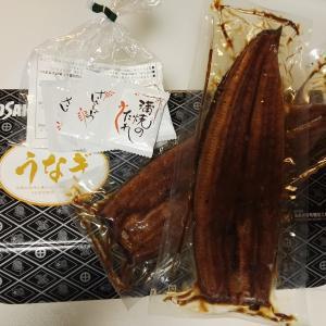 鹿児島の鰻は激ウマだった!