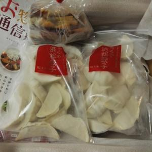 静岡の餃子は美味かった!