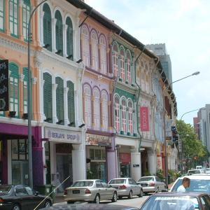アトピーとの闘い シンガポールでアーユルヴェーダ