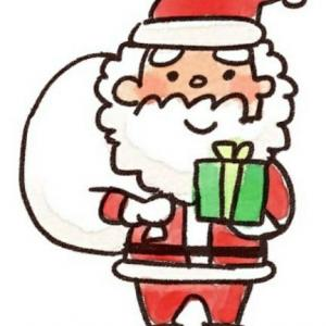 そろそろクリスマスの季節ですね~