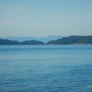 カゴ釣り(2020/10/27若潮↓)マダイ42cm他
