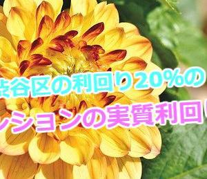 渋谷区の利回り20%の区分マンションの実質利回りを計算。物件取扱い不動産会社の情報も掲載!