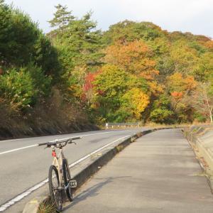 久しぶりに自転車通勤しました