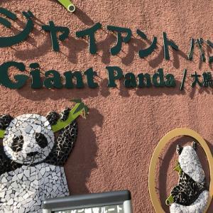 パンダとモノレール(上野公園にて②~片耳とらのあな)