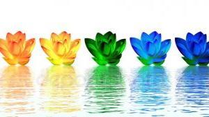 心の色… 陰と陽…