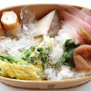 豆苗の卵焼き弁当と立秋
