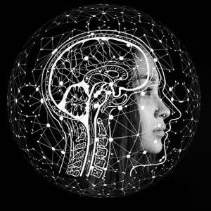 脳科学と四柱推命