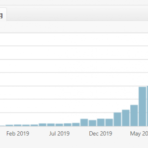 2年かけて月6000PVを達成。継続できてりゃいつかはここまで来れる。