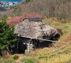 みなみの桜番外編 石部の棚田 その6 水車小屋