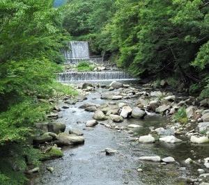 まだ見られるか新緑 箱根 その3 川に沿って進む