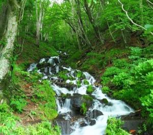 気ままな撮影の旅 その7 群馬 沿道の滝