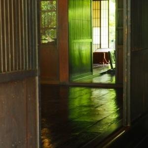 新緑とアジサイ その7 瀬戸屋敷②